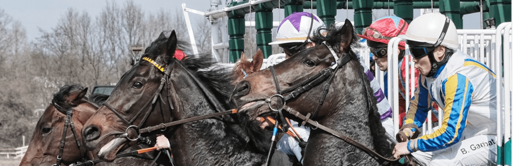 Singapore Horse Race Betting - Why Is it So Interesting?